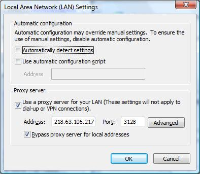 ie8_lan_settings